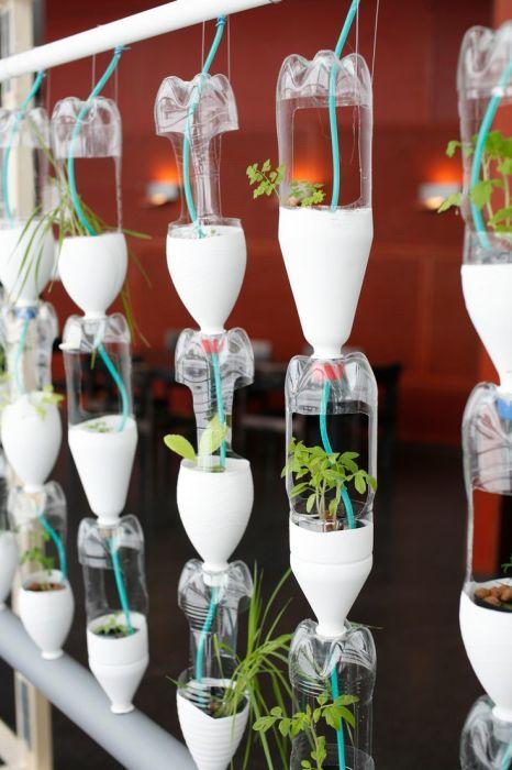 Подвесные горшки из пластиковых бутылок с системой автоматического полива.