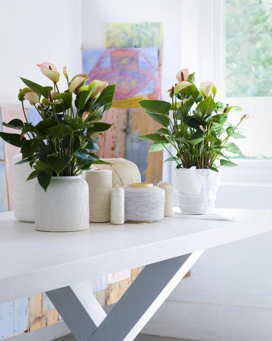 Деревянный стол может послужить идеальной подставкой для цветочных горшков.