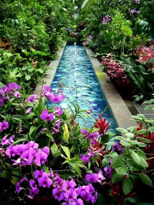 Длинный искусственный водоем прямоугольной формы в пышных садовых многолетних цветах и растениях, который создаст тёплую и приятную атмосферу на территории садового участка.
