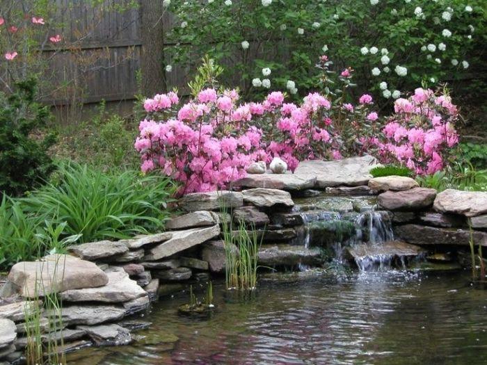 Яркие розовые цветы над искусственным каскадным водопадом и небольшим декоративным прудом.