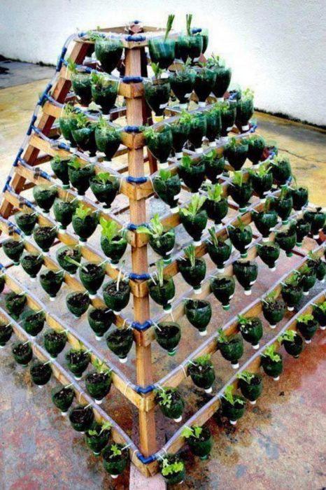 Многоуровневый сад из обрезанных пластиковых бутылок, которые закреплены на конусовидном деревянном каркасе.