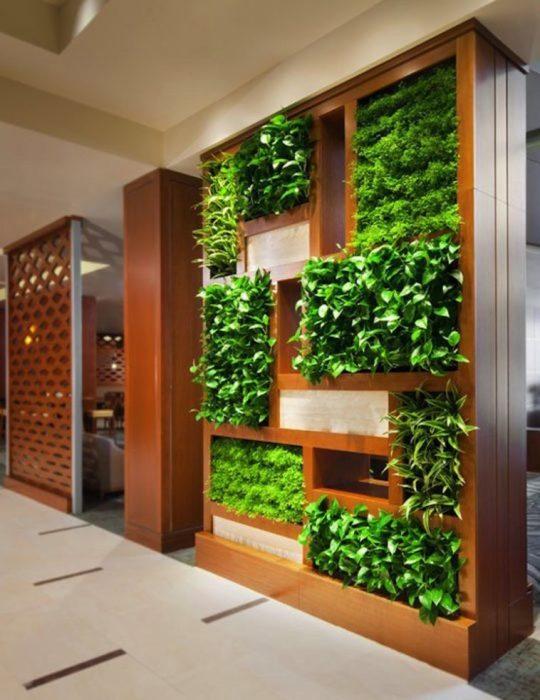 Вертикальное озеленение позволит создать в помещении свежий и благоприятный микроклимат.