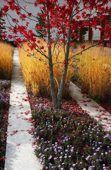 Багряная листва и аромат поздних цветов позволят насладиться осенней красотой на дачном участке.