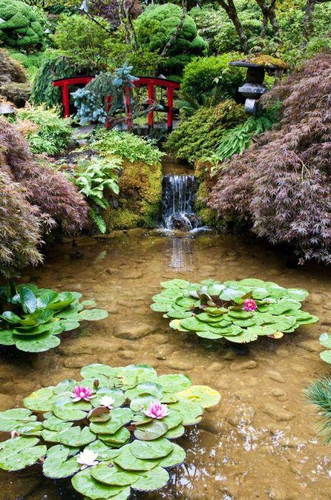 Пруд, который занимает центральную часть садового участка для углубления и расширения пространства.