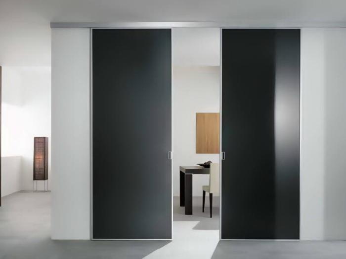 Раздвижные межкомнатные двери в стиле хай-тек.
