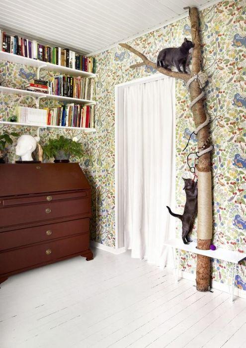 Декоративное дерево в интерьере, созданное специально для домашних животных.