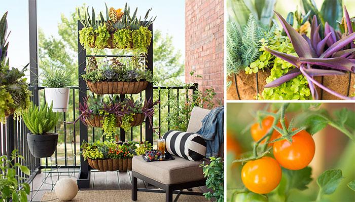 Вертикальное озеленение в интерьере позволит создать уникальный микроклимат в помещении.