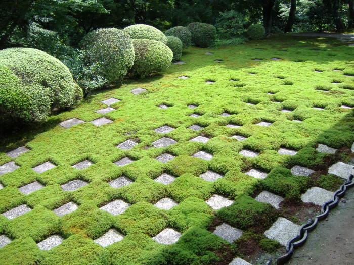 Отличная идея использования природного камня в ландшафтном дизайне.