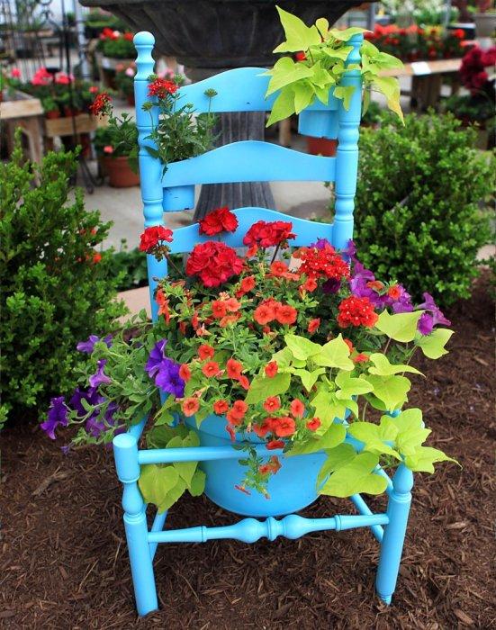 Старый деревянный стул, покрашенный в синий цвет может стать отличным основанием для нескольких кашпо.