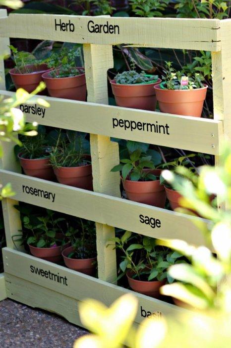 Для создания роскошного озеленения в саду предлагаются различные конструкции вертикального озеленения.
