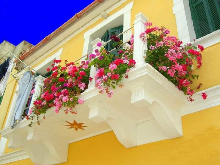 Традиционное наружное озеленение балкона, которое в последнее время все больше становится популярным.