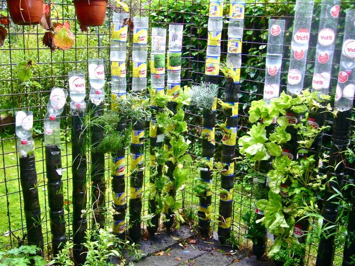 Автоматизированный полив для растений в пластиковых кашпо.