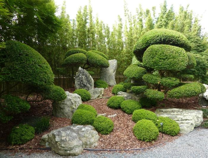Такой сад придется по вкусе даже настоящим ценителям и профессионалам садового-парковой культуры.