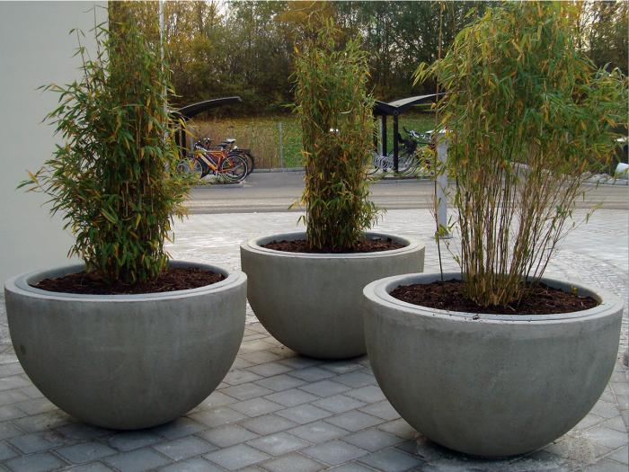 Визначною пам'яткою будь-якого двору можуть стати звичайні бетонні кашпо напівсферичної форми.