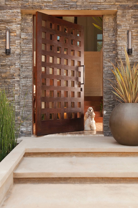 Ультрасовременная парадная дверь, которую все захотят иметь в своем доме.