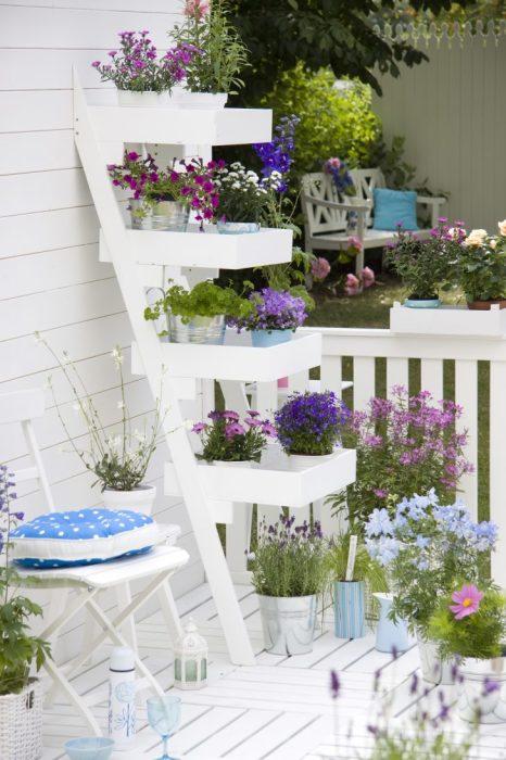 Лестница для комнатных растений на территории садового участка.