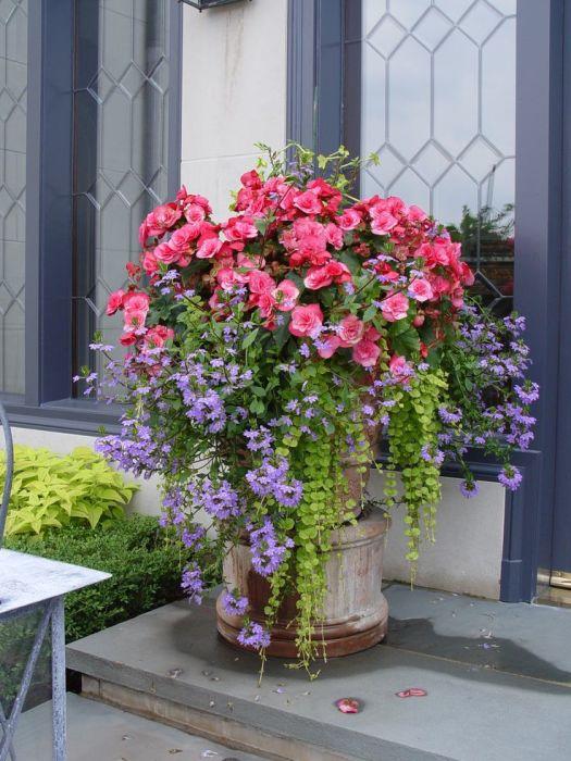 Классическое каменное кашпо у входа в загородный дом привлечет внимание гостей и соседей.
