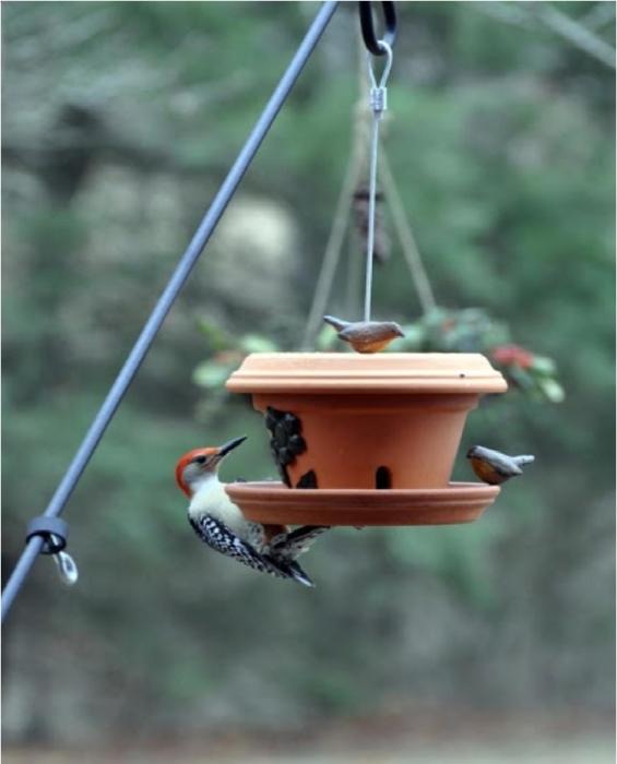 Оригинальная кормушка для птиц, сделанная из глиняного горшка.