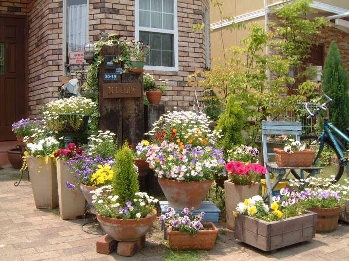 Кашпо и горшки для комнатных растений разных форм и размеров, которые впишутся в любой ландшафтный дизайн.