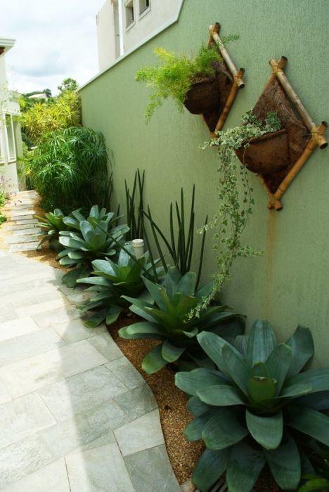 Редкие растения - незаменимая деталь современного ландшафтного дизайна.