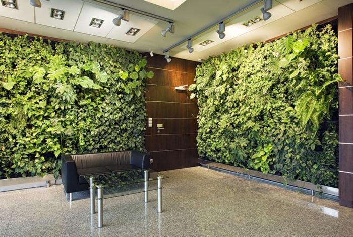 Вертикальное озеленение - прекрасное решение для оформления интерьера.