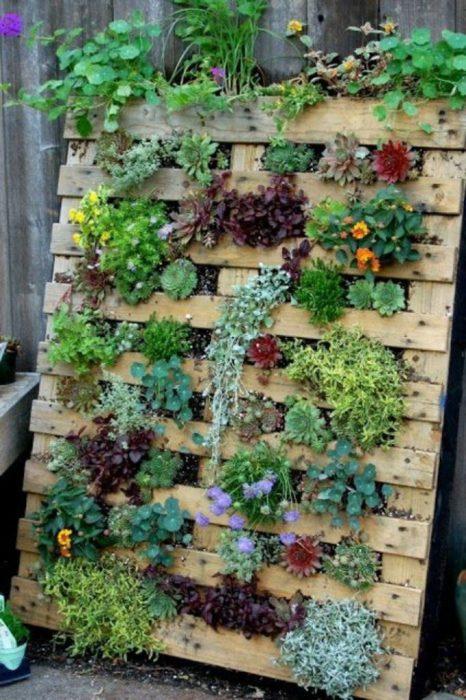 Небольшие вертикальные грядки из поддонов, которые идеально подойдут для выращивания цветов и растений, а также станут настоящим украшением садового участка.