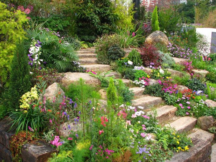 Оригинальный вариант озеленения и благоустройство территории садового участка.