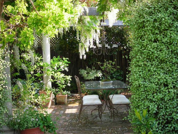 Открытый внутренний дворик, с разных сторон окруженный высокими растениями.