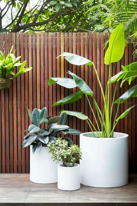 Озеленение играет большую роль в оформлении террасы или патио.