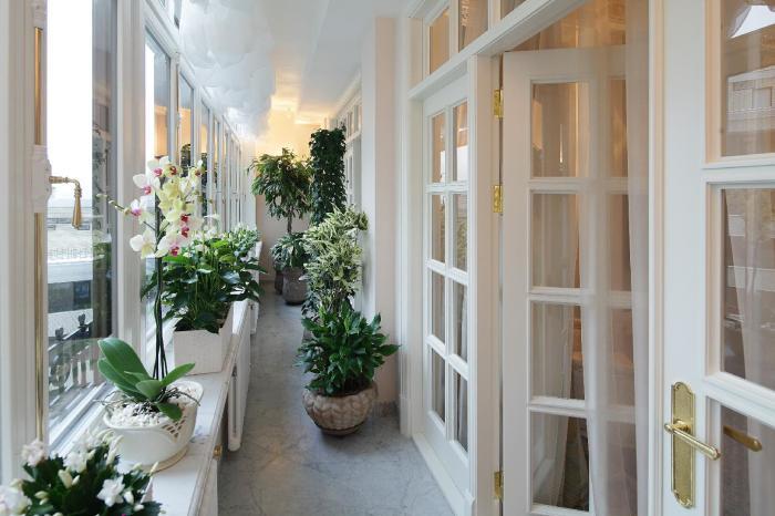 Тонизирующий эффект растений создаст приятную атмосферу в любом помещении.