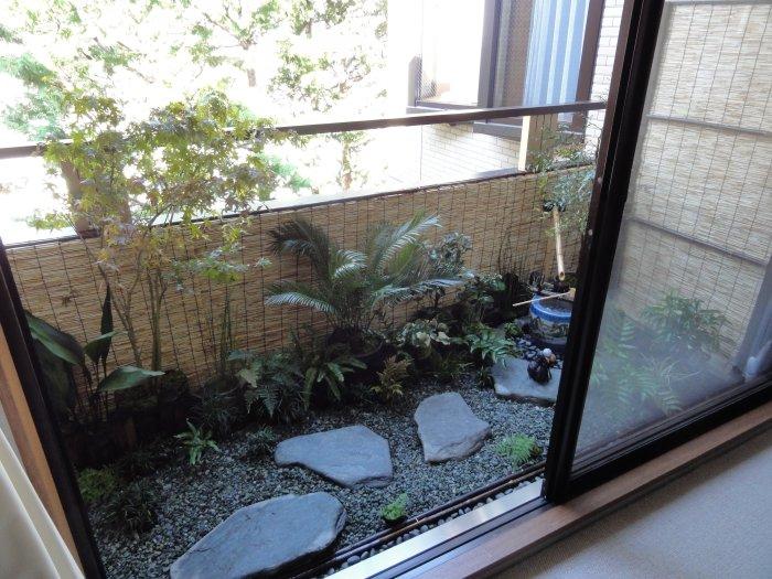 Субтропический стиль зимнего сада отлично расположившийся на балконе квартиры.