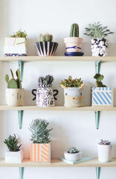 Миниатюрные комнатные растения будут здорово смотреться на деревянных полках.