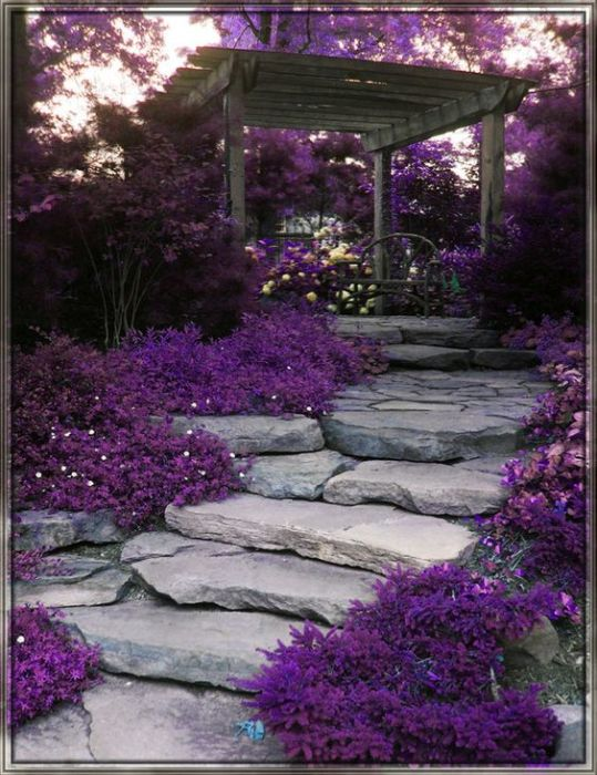 Натуральный камень считается самым лучшим материалом для мощения садовых дорожек и парковых аллей.
