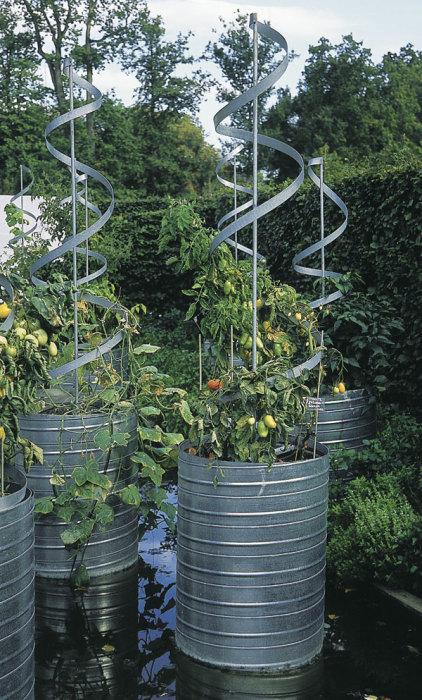 Если на дачном участке мало места, из жестяных бочек можно создать отличные грядки для выращивания растений.