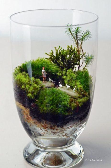 Маленький террариум в стеклянном стакане.