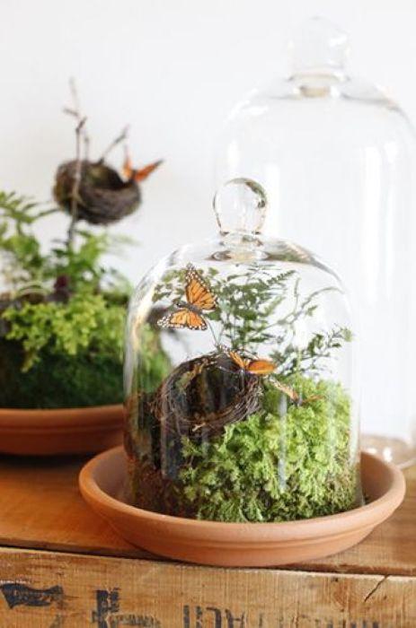 Маленький террариум с бабочками - отличное решение для тех, у кого не хватает времени позаботится о живых растениях.