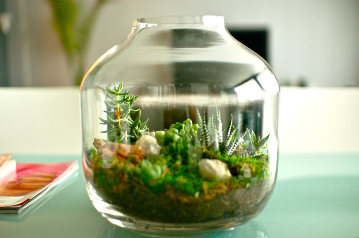 Искусственные растения в интерьере маленьком террариуме.