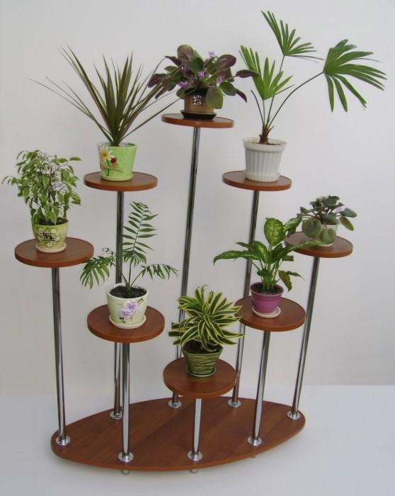 Специально спроектированный стеллаж для комнатных растений.