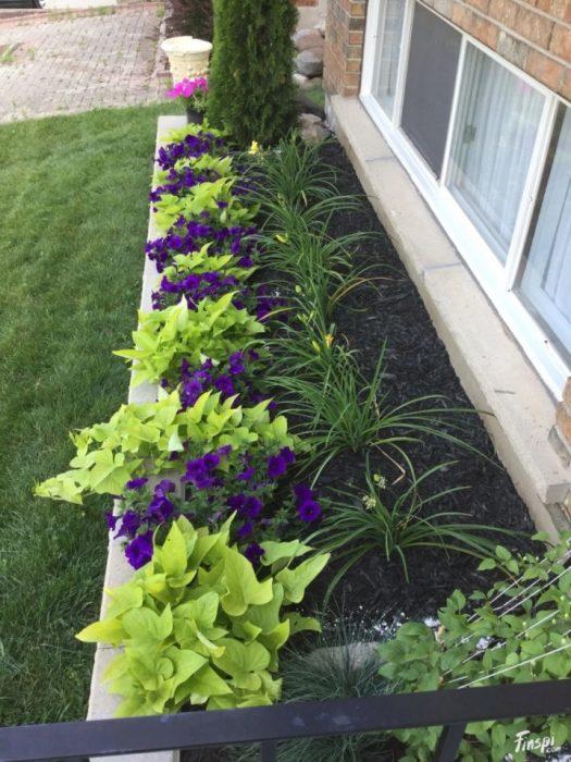 Небольшая цветочная клумба, которая станет настоящим украшением вашего загородного участка.