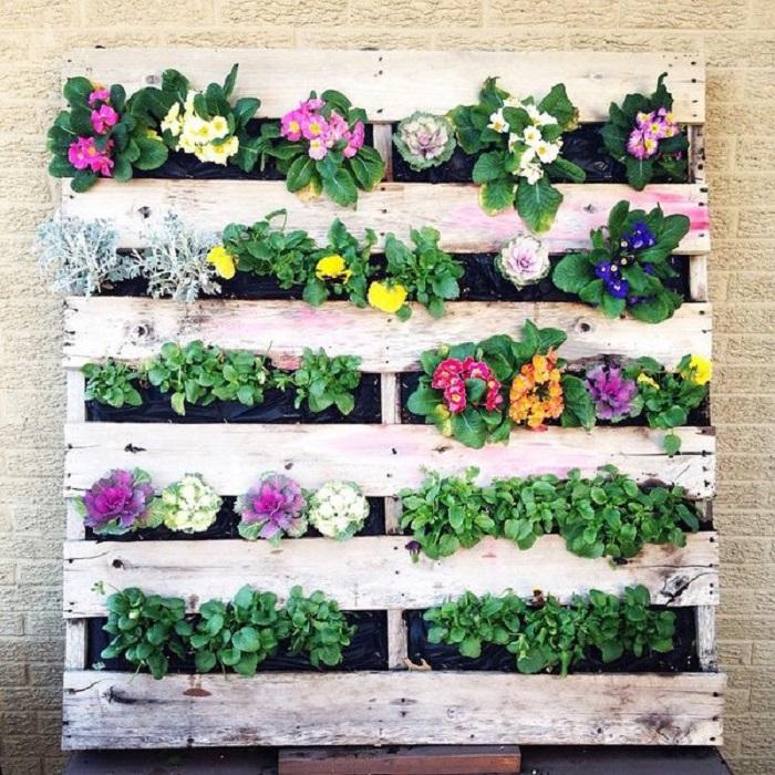 Из деревянных поддонов выходят отличные вертикальные грядки для однолетних цветов и растений.