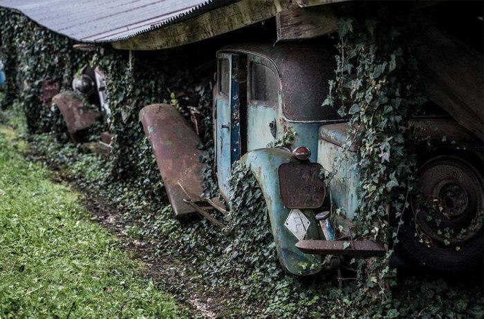 Раритетные авто на французской ферме.