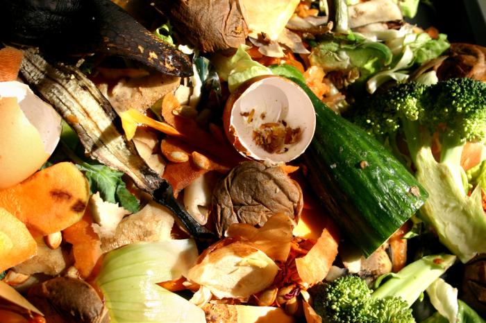 Пищевые отходы так же страшны для экосистемы, как и любые другие.