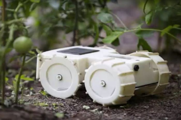 Робот, который заставит забыл о прополке участка.