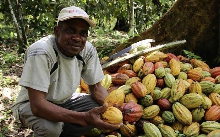 Производство шоколада сложно и очень дорого.