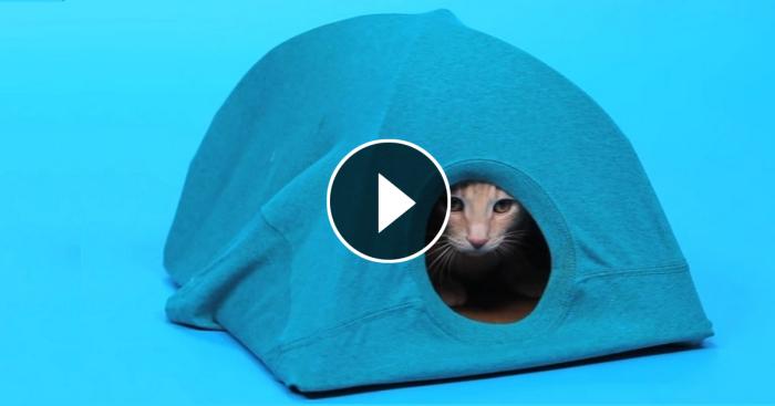 Домик для вашего кота.