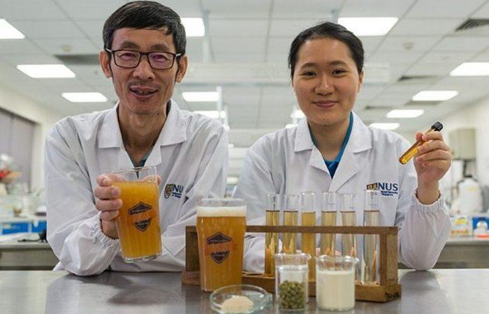 Пробиотическое пиво может повысить иммунитет.