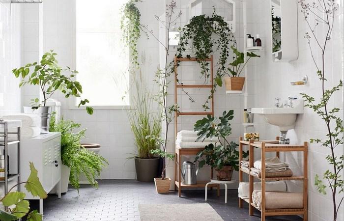 Добавить растения.