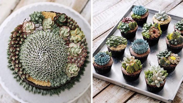 Великолепные торты-суккуленты.