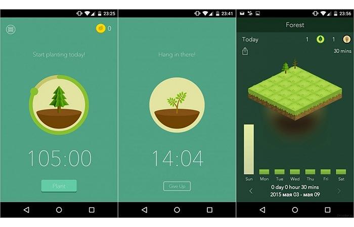 Посади семя и не не бери в руки смартфон.
