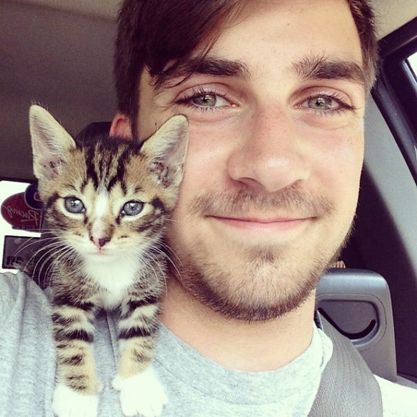 Лучшие парни - это парни с кошками.